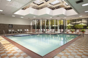 gallery/embassy suites atl perimeter pool
